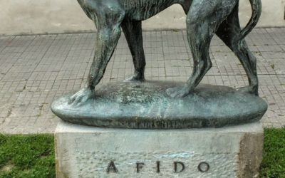 Fido – Patron Saint For Our Business Name.